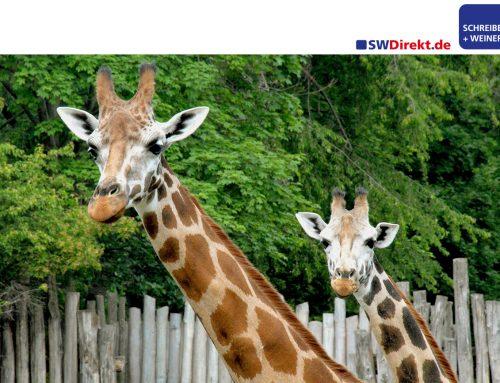 Tierischer Kunde: Zoo Leipzig